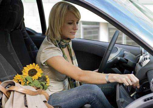 girasoles en un coche