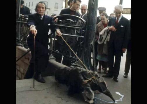 Dalí con oso hormiguero surrealista.