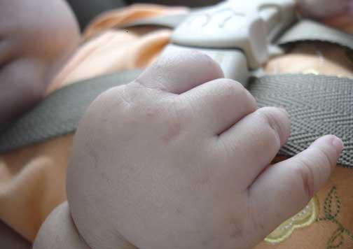 cinturón de sillita de bebé.